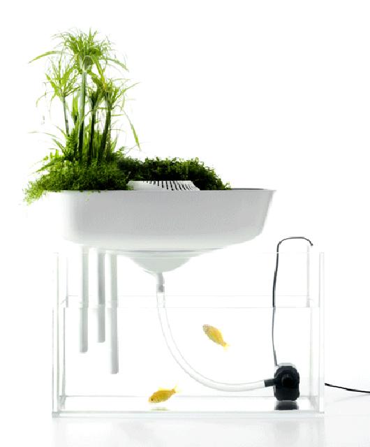 floating-garden-2