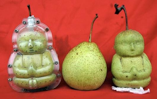 legumes etranges (2)