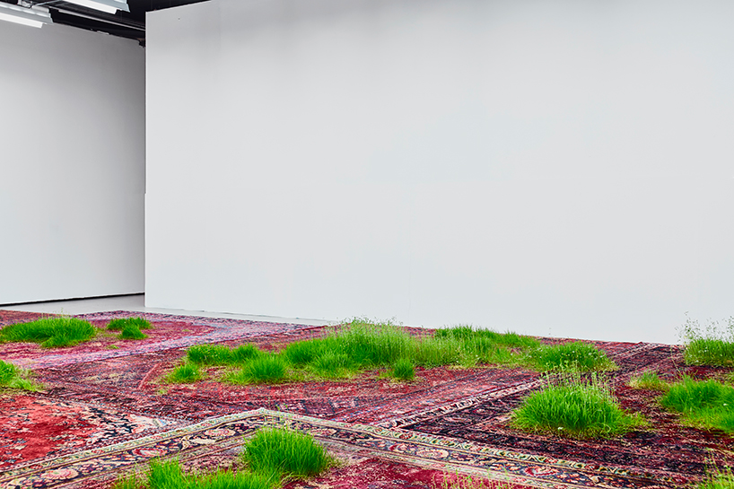 martin-roth-persian-rugs-installation-korean-cultural-centre-designboom-06