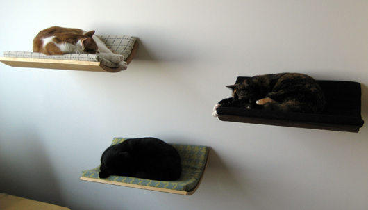 the-curve-pet-bed (7)