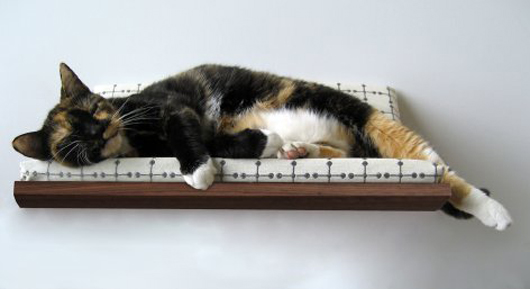 the-curve-pet-bed